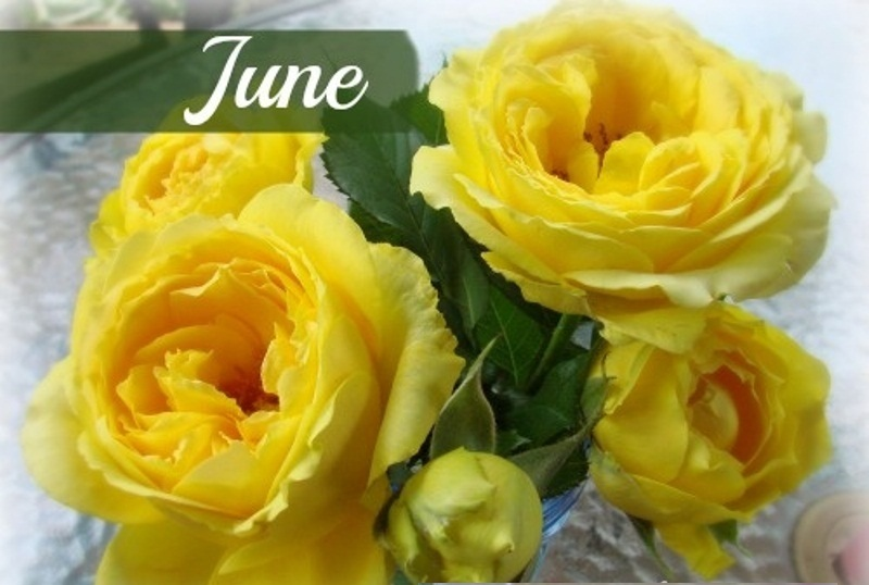 Birth Flower For June