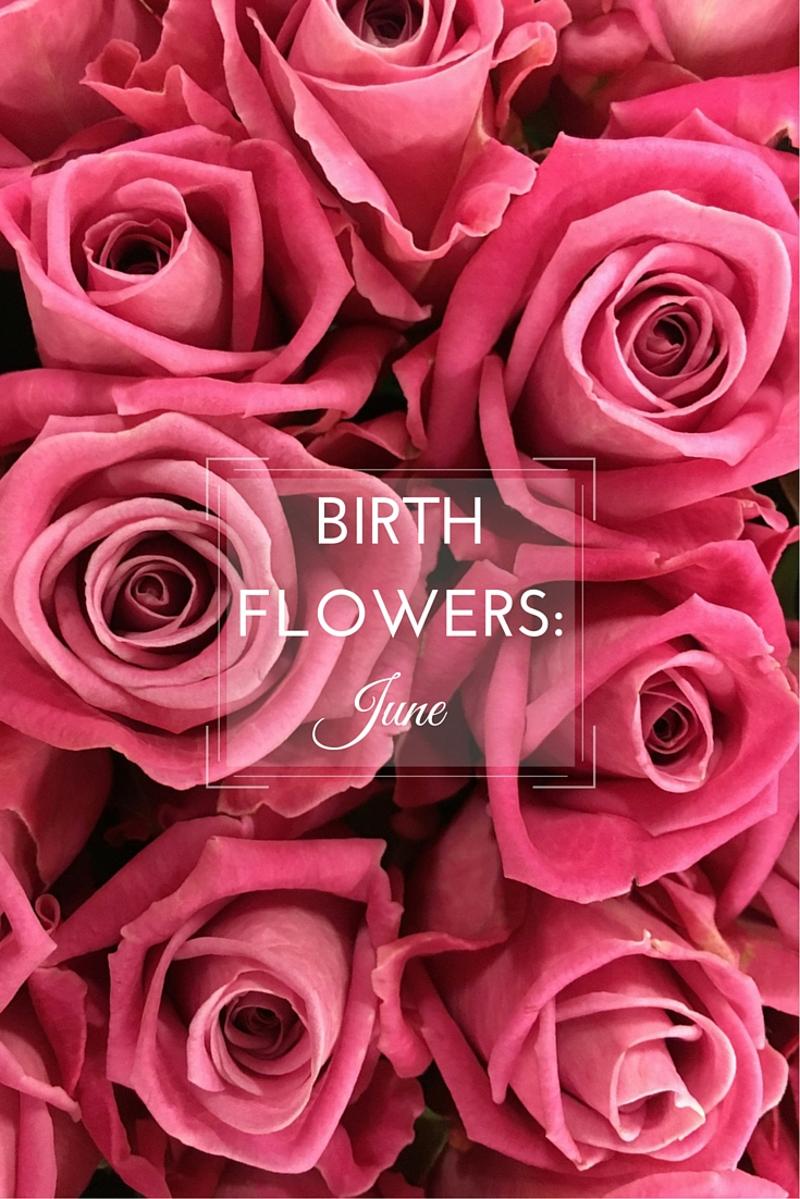Birth Flower June