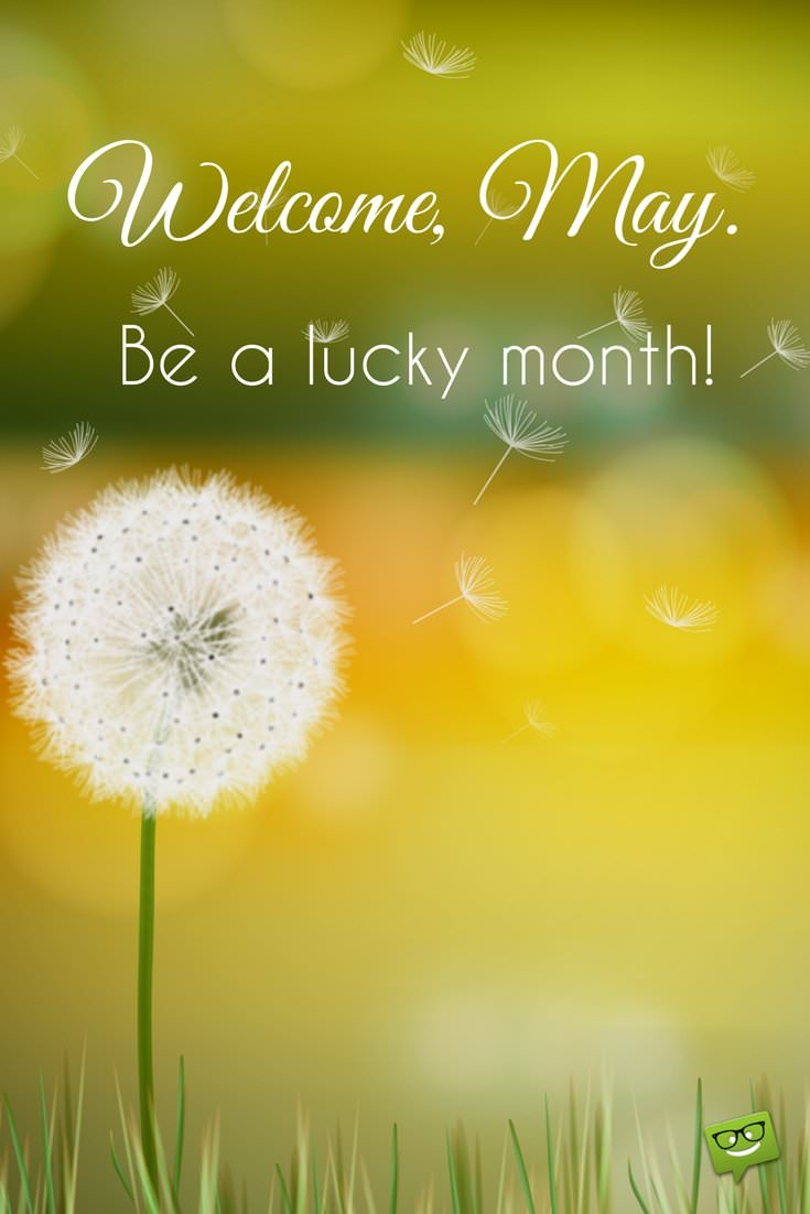 Free Welcome May Images 2018