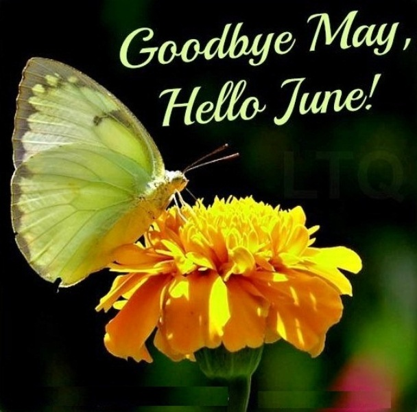 Good Bye May Hello June Messages