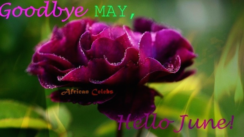 Good Bye May Hello June Photos