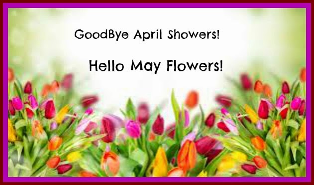 Goodbye April Showers Hello May Flower