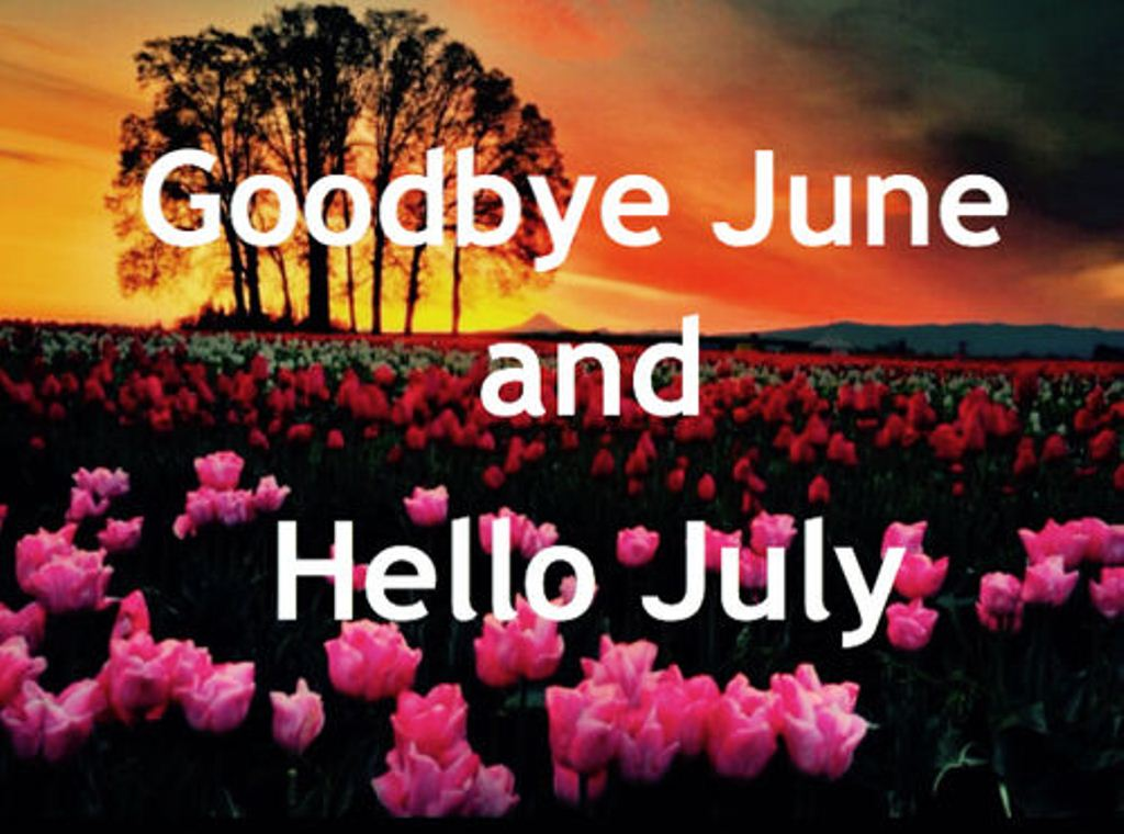 Goodbye June Hello July Month