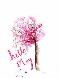 Hello May Floral Pictures