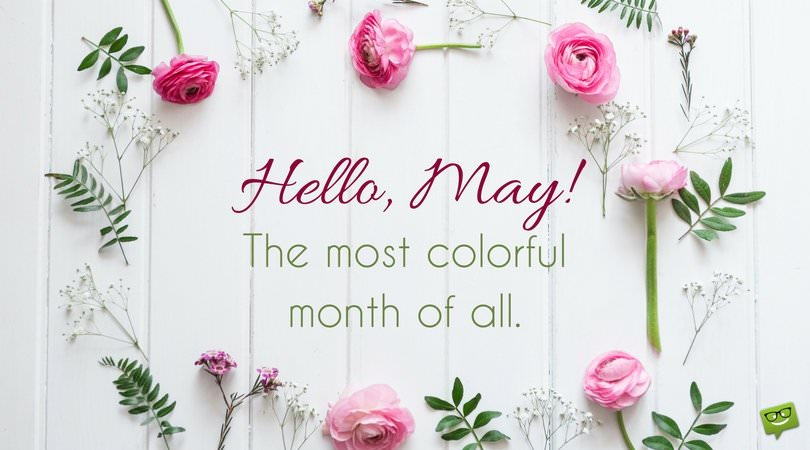 Hello May Photos