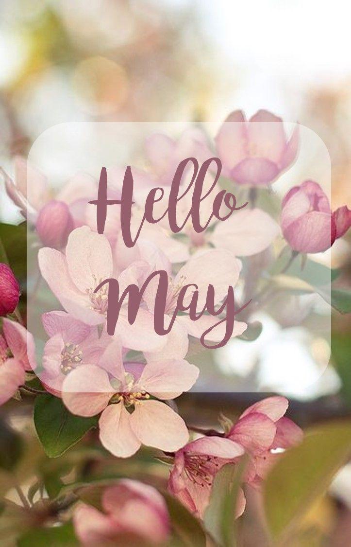 Hello May Quotes Hd Sayings