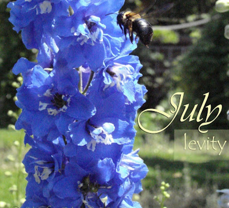 July Month Flower Name