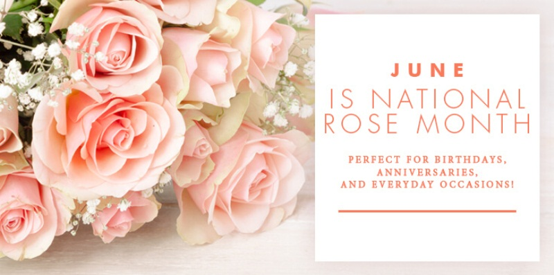 June Rose Birth Flower