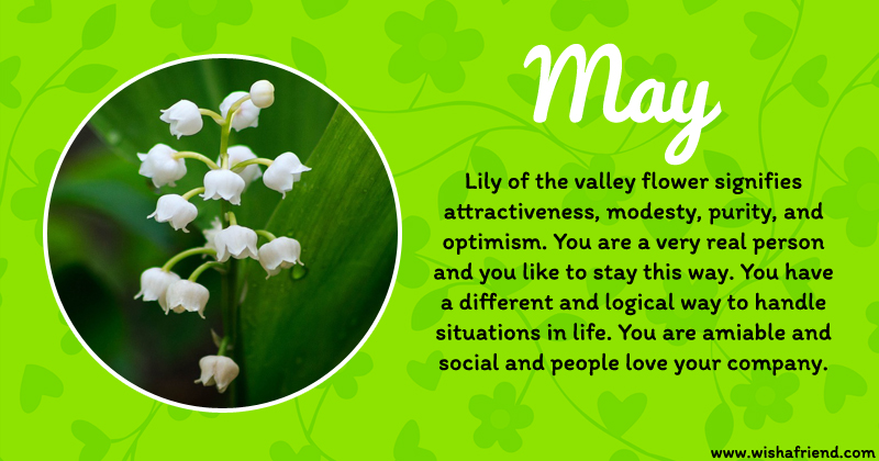 May Birth Flower Meaning