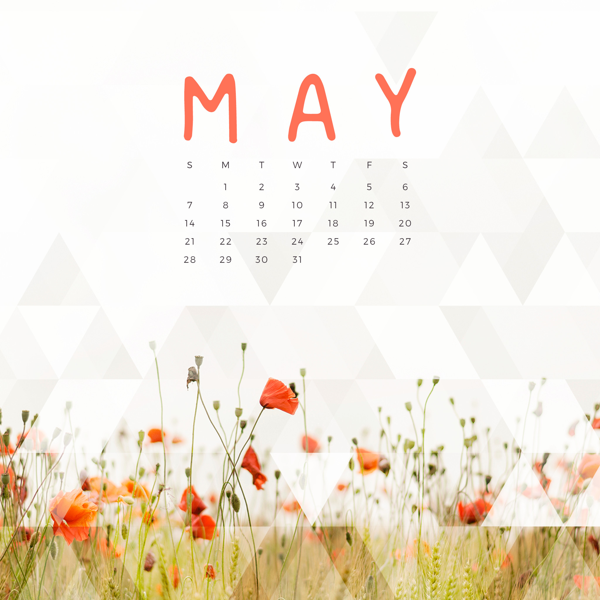 May Floral Wallpaper Calendar
