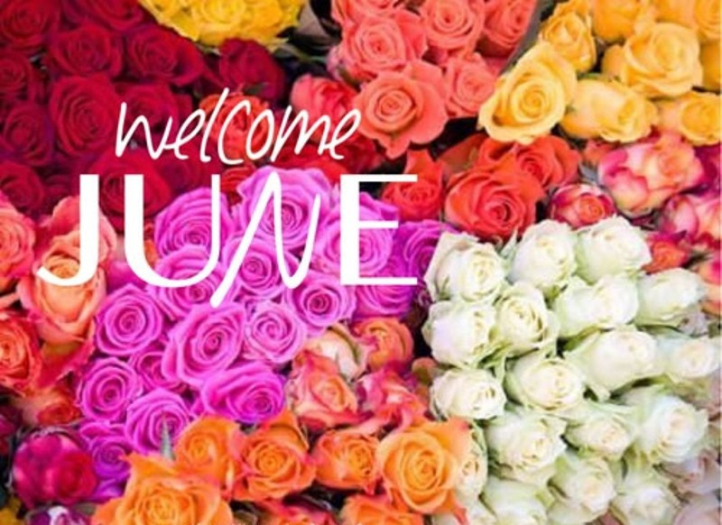 Welcome June Flower Images and Pictures