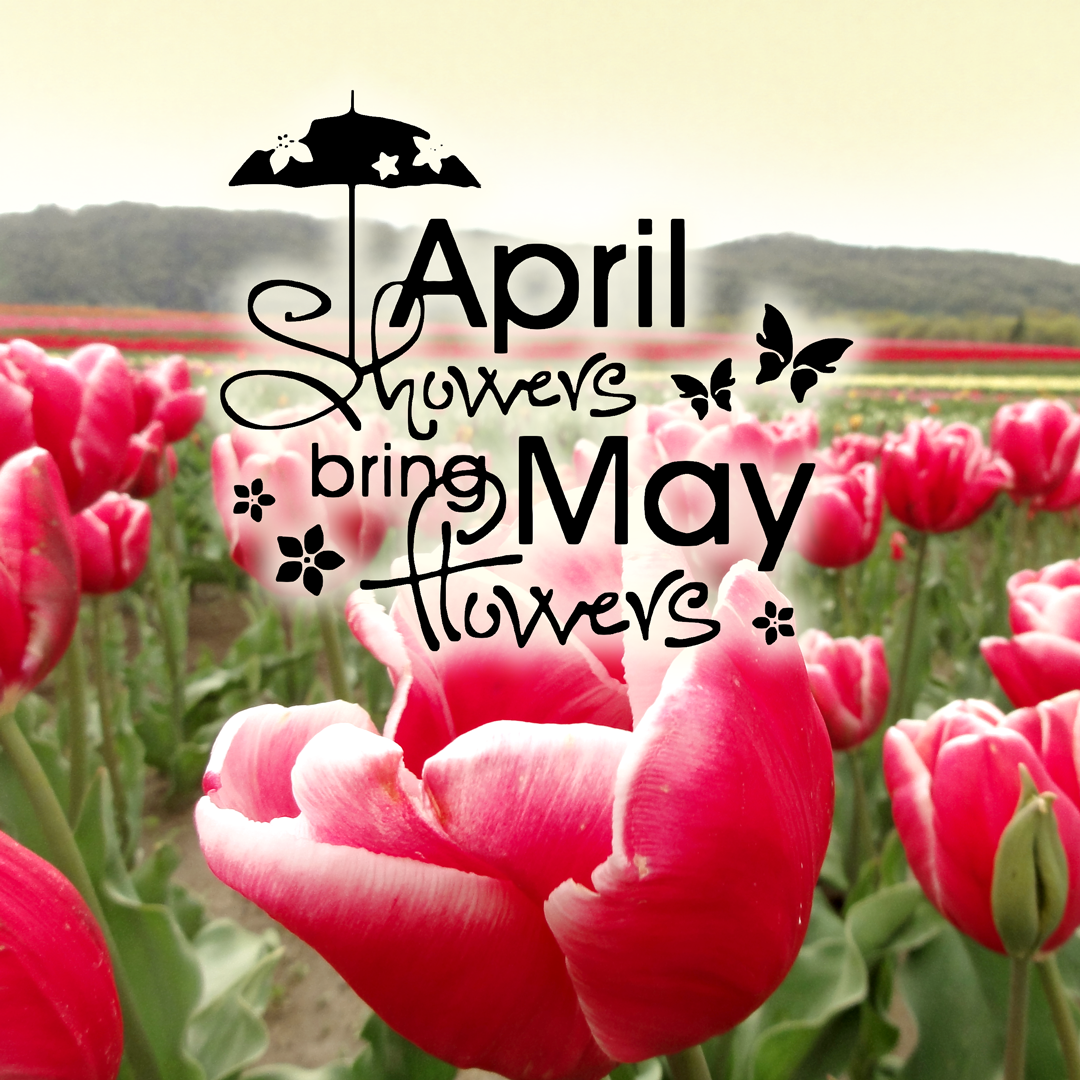 Welcome May Images Floral Download