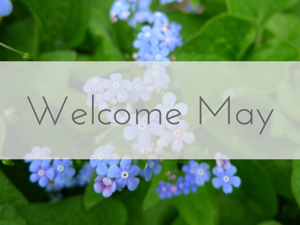 Welcome May Quotes Hd Banner