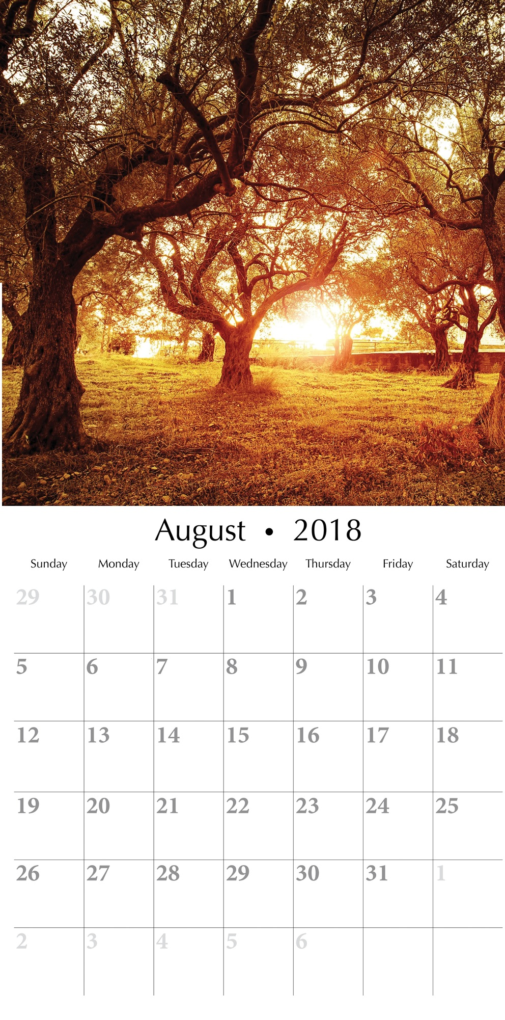 August 2018 Beauty of Tree Wall Calendar