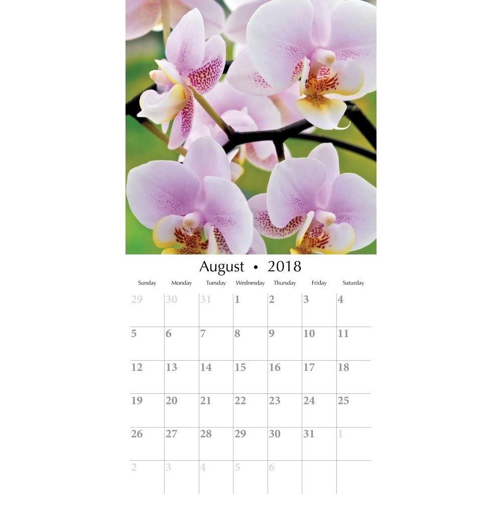 August 2018 Orchids Wall Calendar