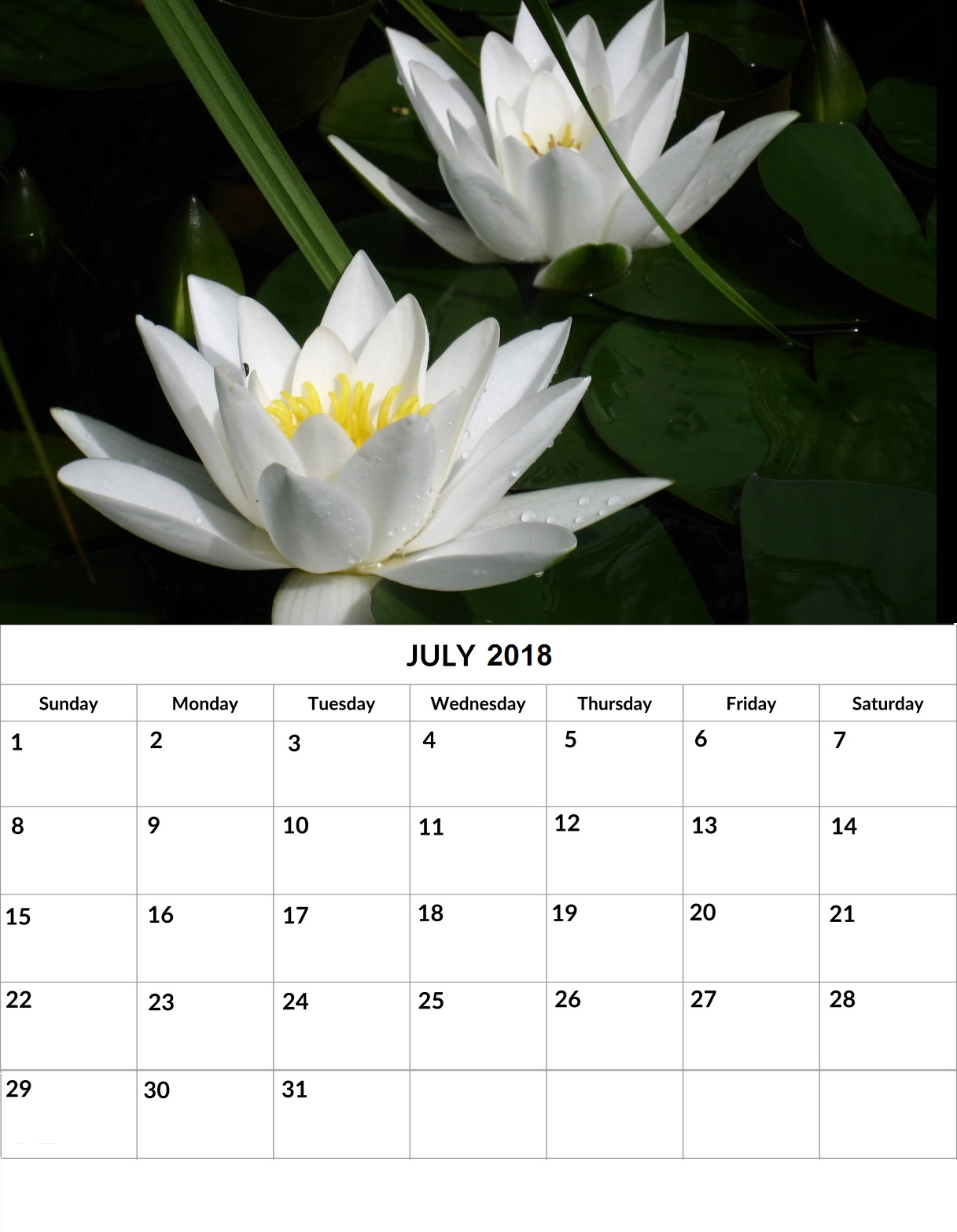 July 2018 Wall and Desk Calendar
