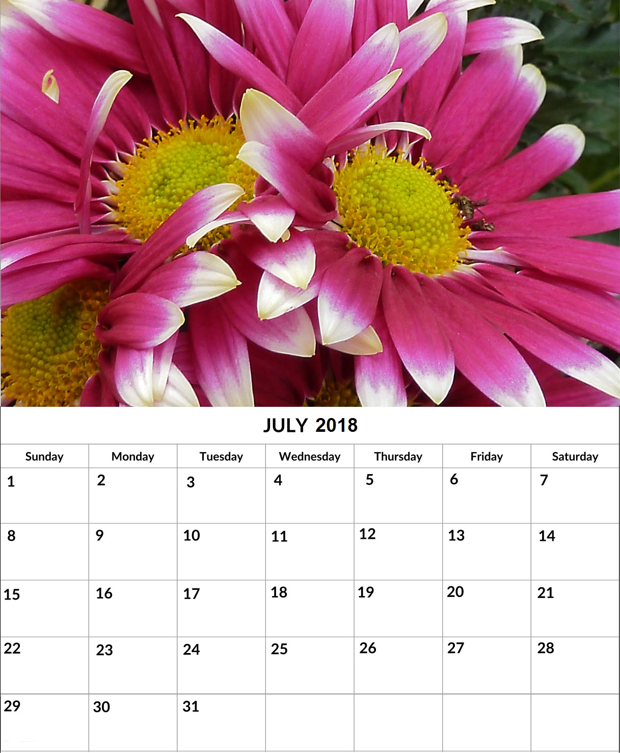 Printable July 2018 Wall Calendar Template