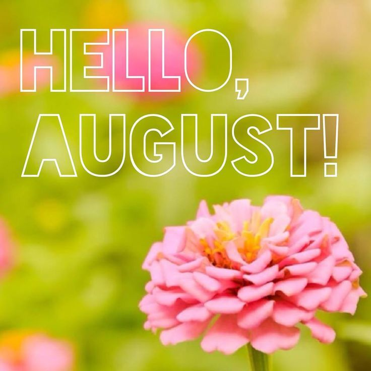 Hello Month of August Quotes