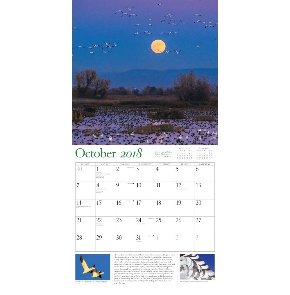 Best October 2018 Calendar For Office Table