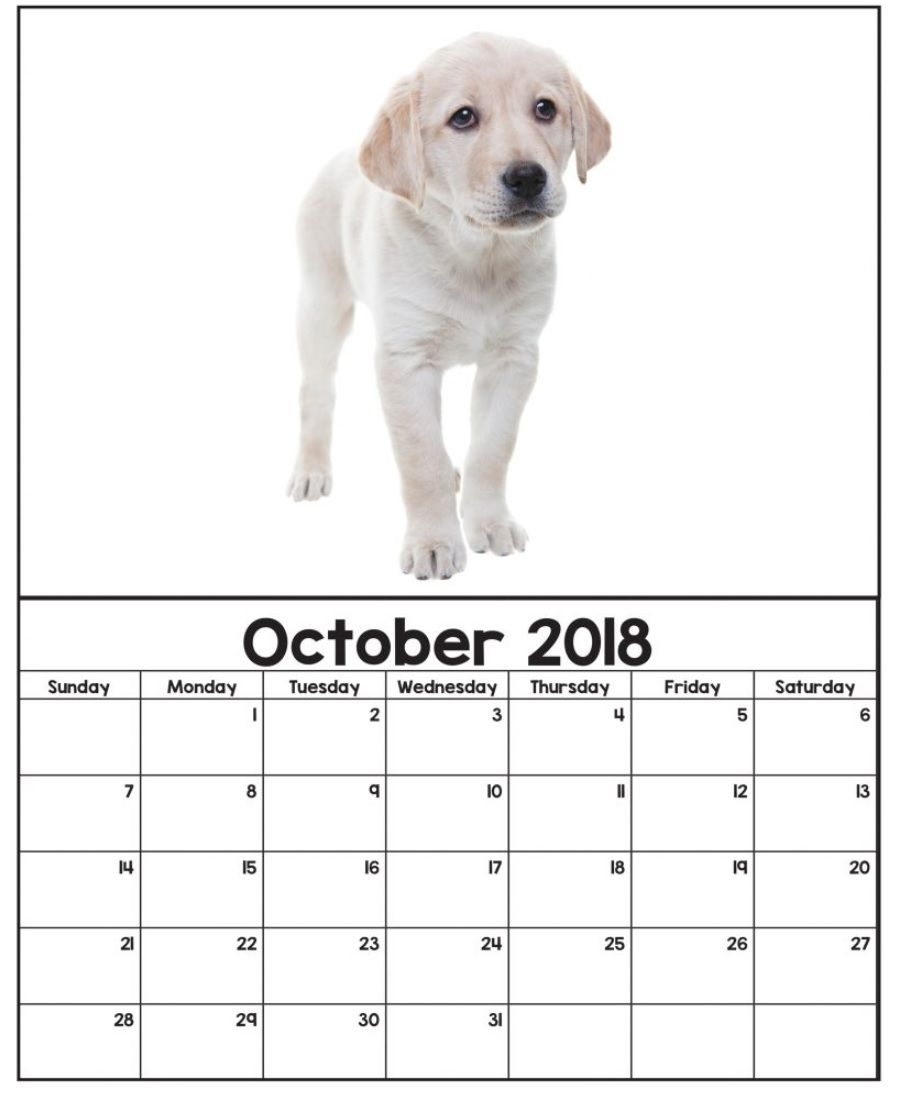 Cute Wall Calendar October 2018