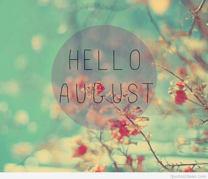 Hello August Wallpaper 2018 HD