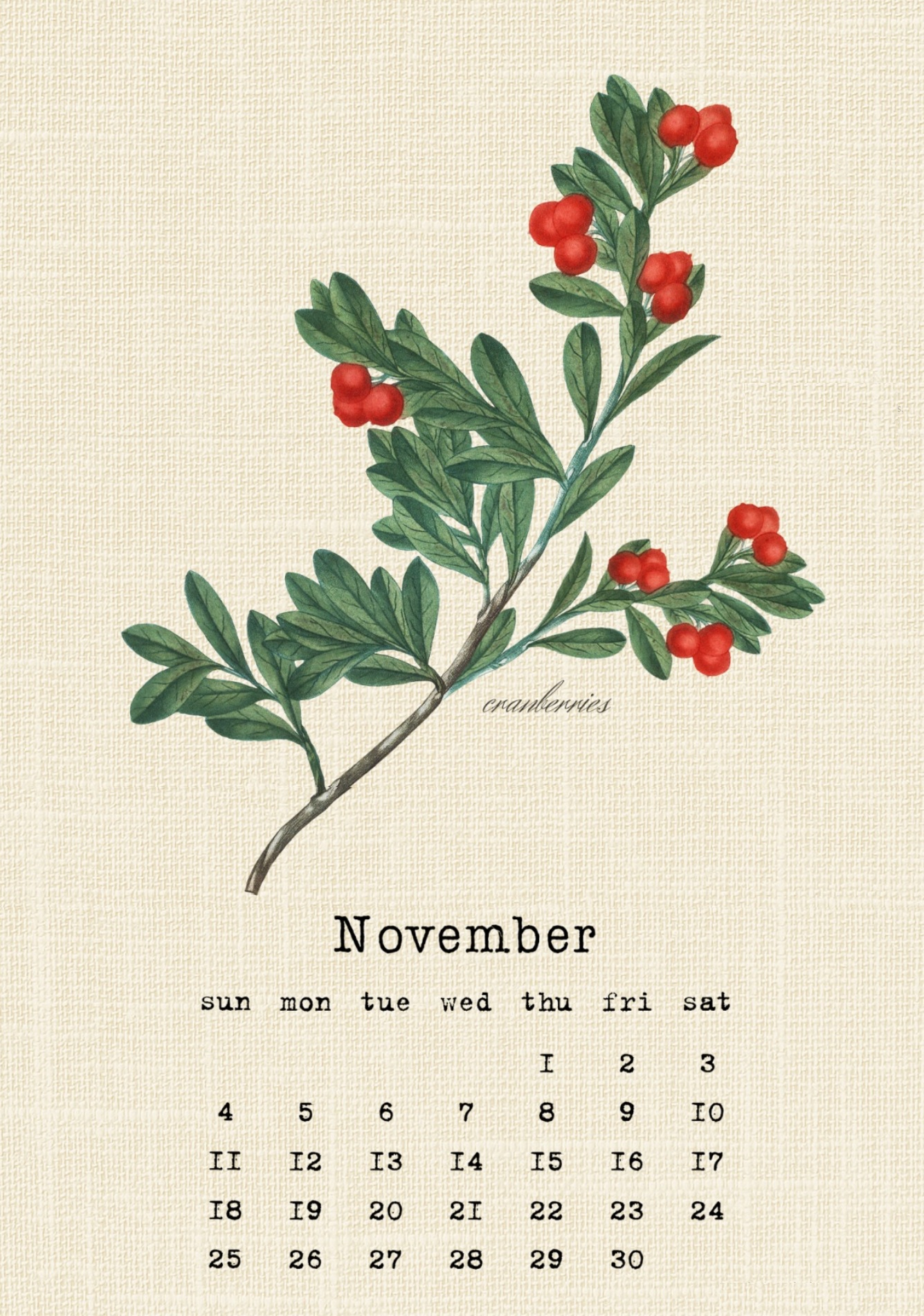Printable November 2018 Cranberries Calendar