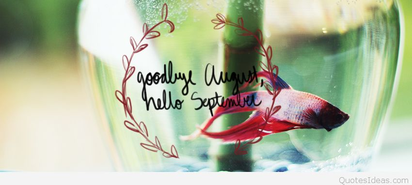 Goodbye August Hello September Wallpaper HD