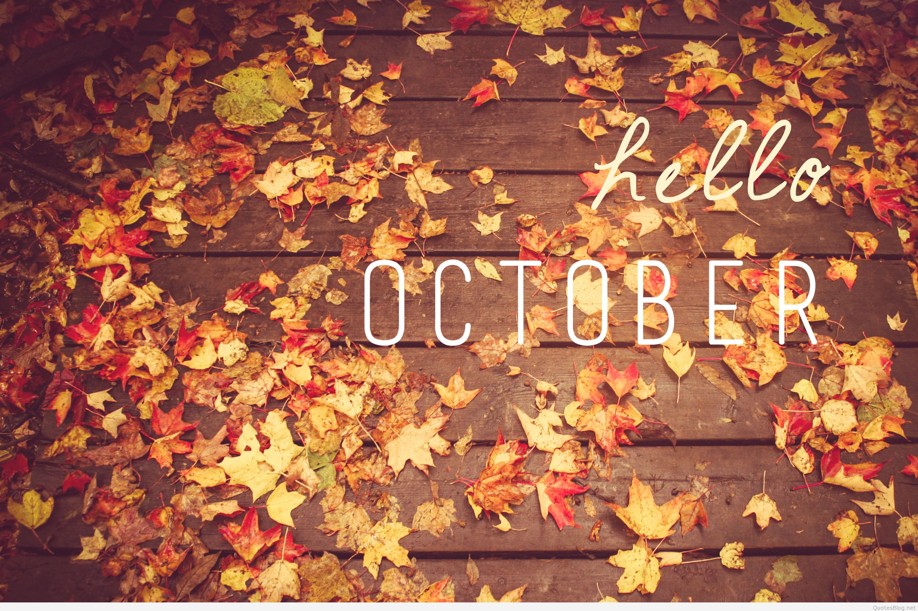 Hello October Images