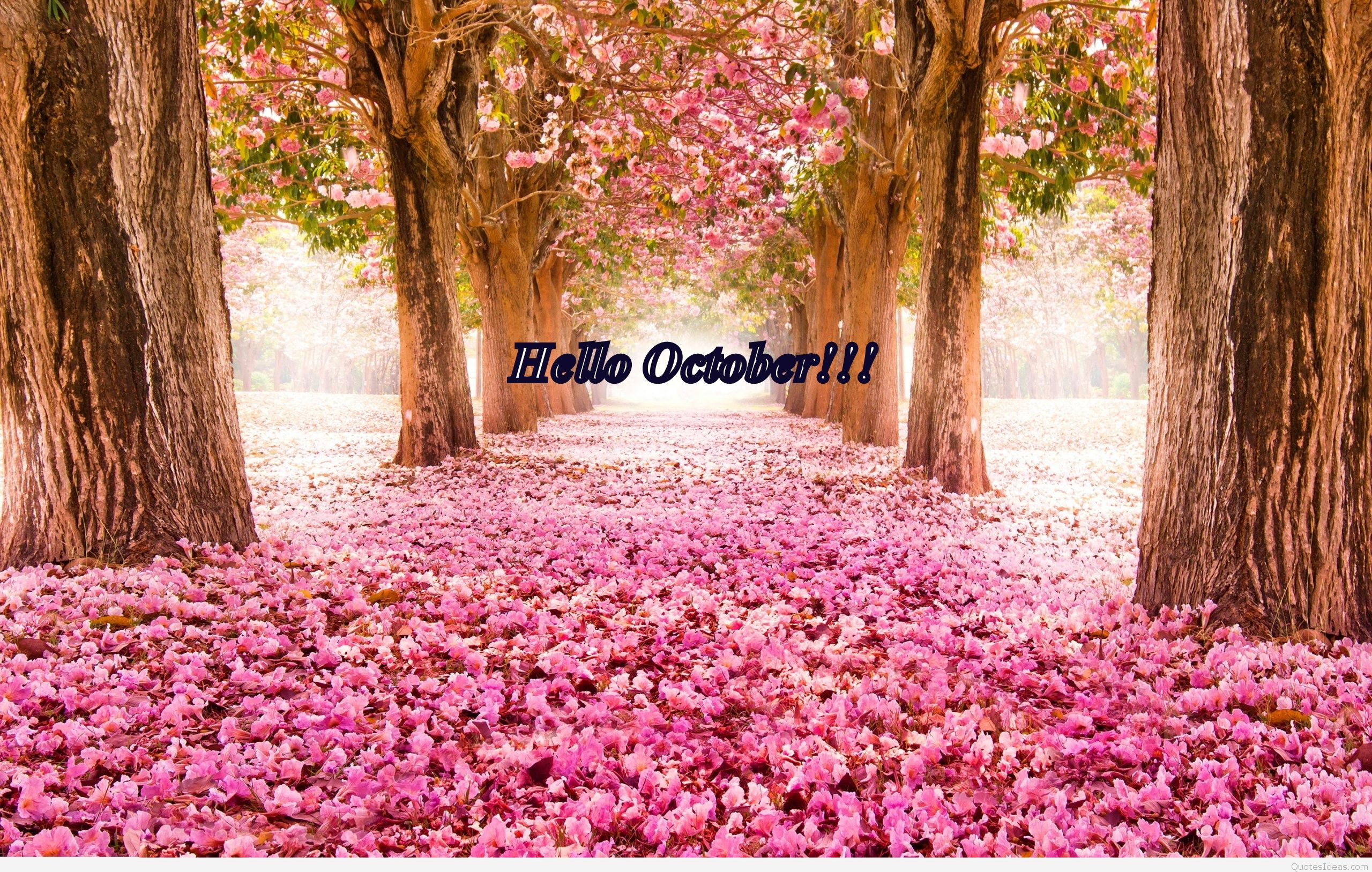 Hello October Quotes With Wallpapers
