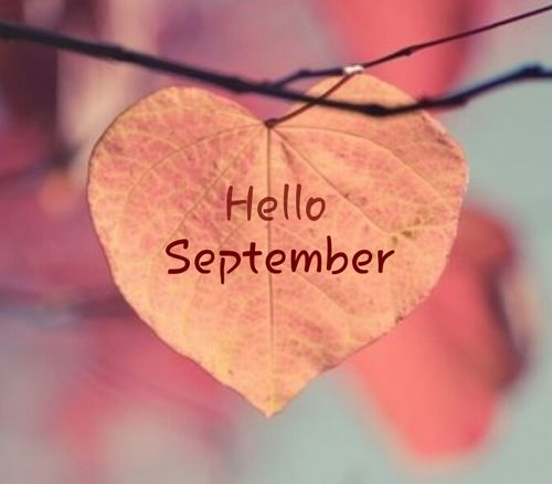 Hello September Heart Leaf Tumblr Photos
