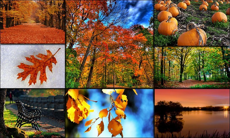September Pictures Free Download