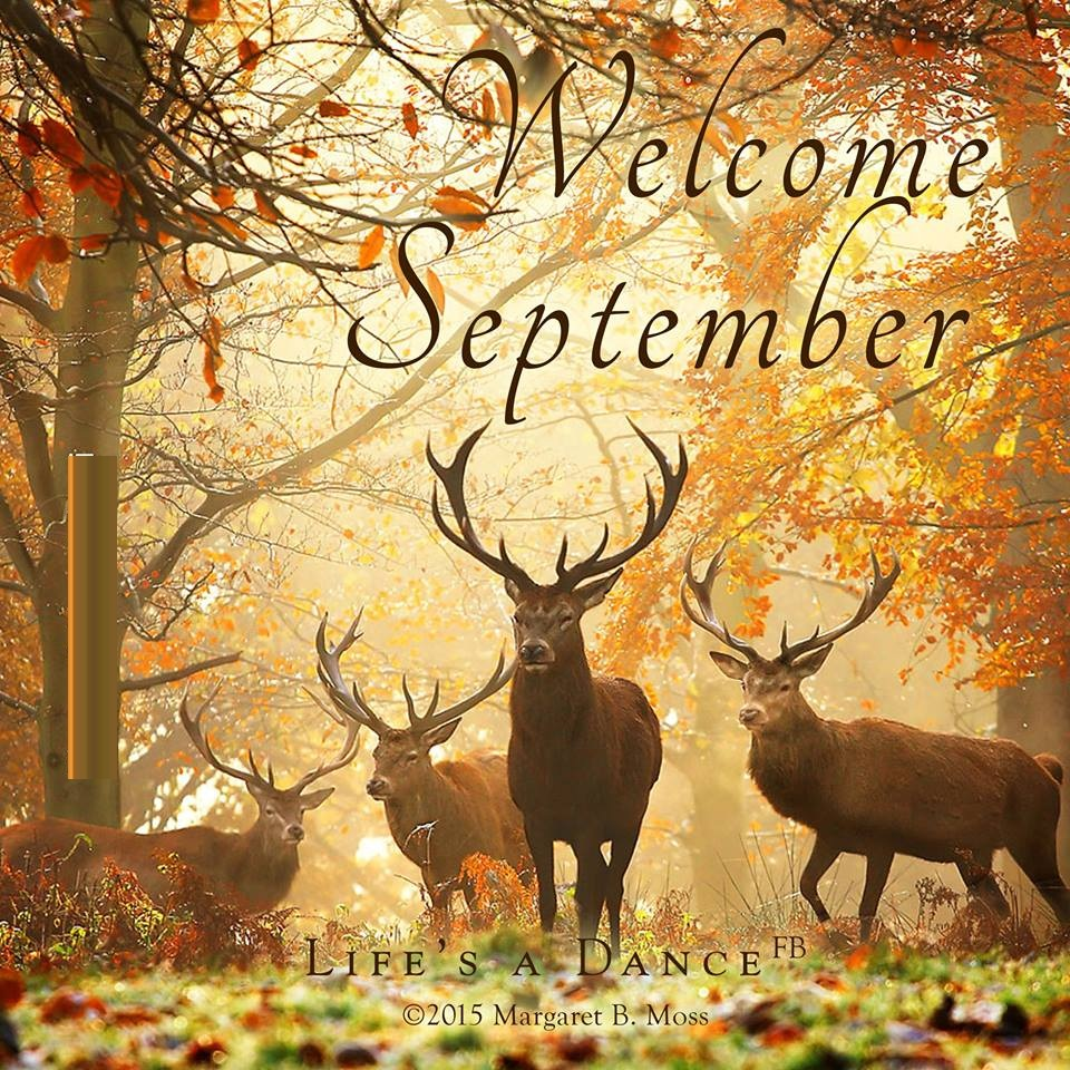 Welcome September 2018 Pics For Facebook
