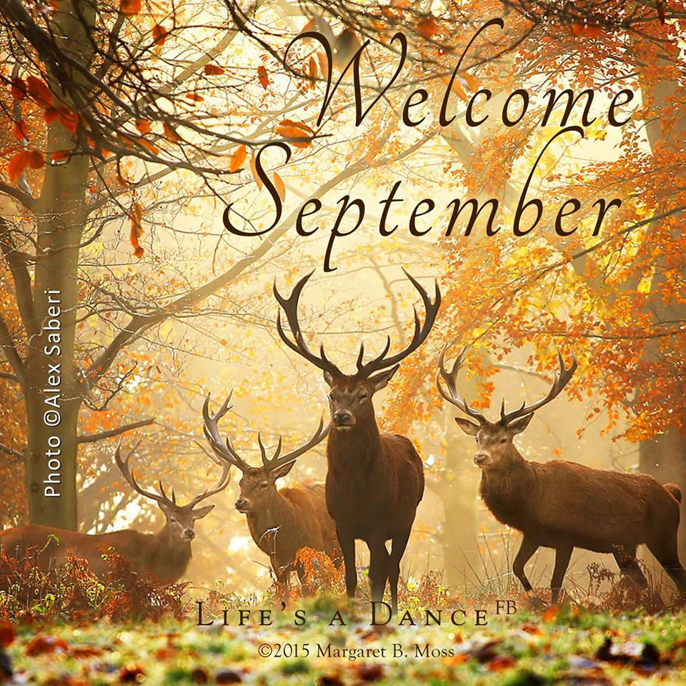 Welcome September Photos For Facebook