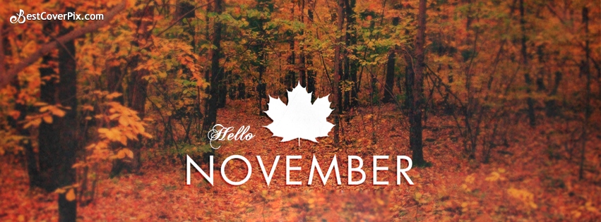Hello November Facebook Cover Photos