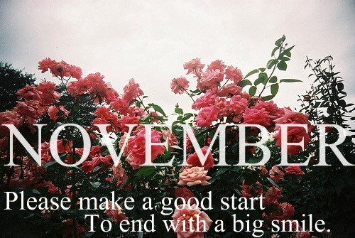 Hello November Flower Tumblr Quotes
