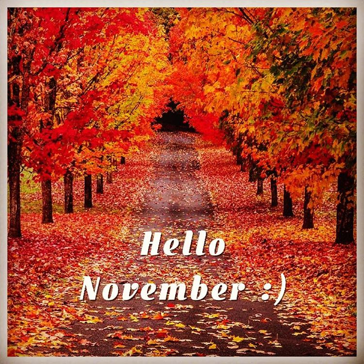 Hello November Month Photos