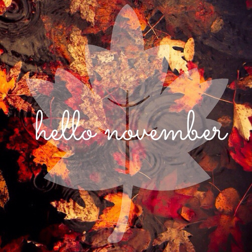 Hello November Photos Free Download