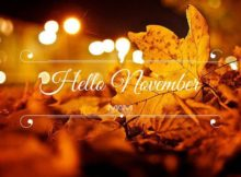 Hello November Pictures Quotes
