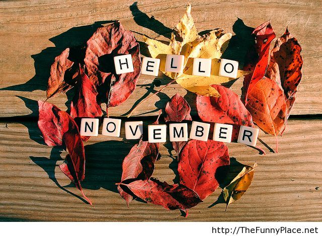 Hello November Pictures for Desktop