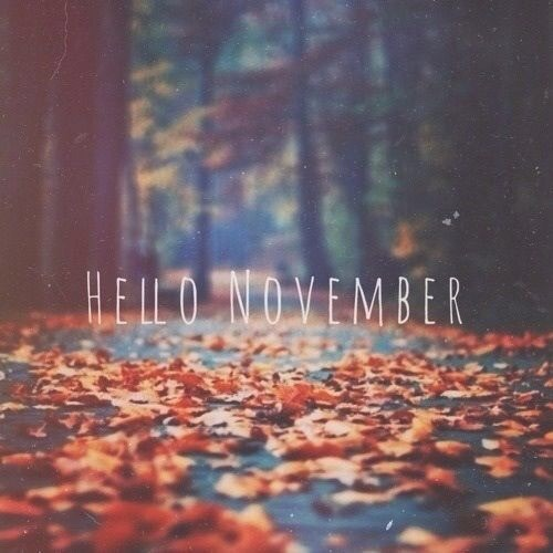 Hello November Tumblr Photos
