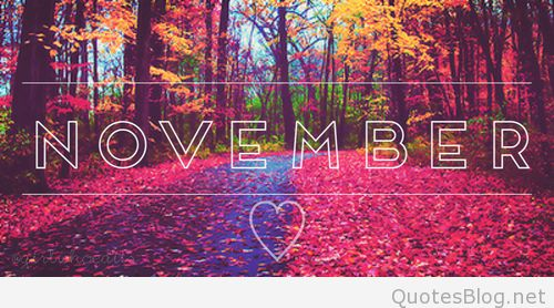 Month of Hello November Photos