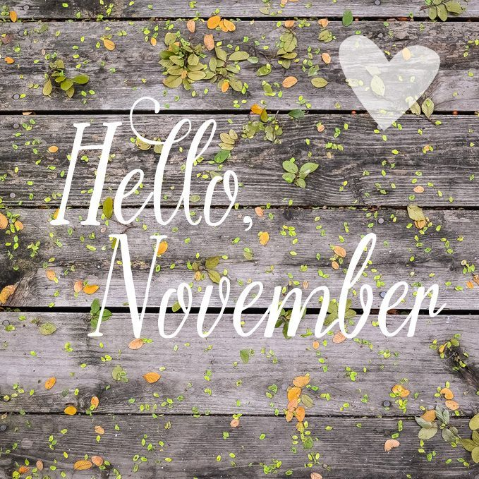 Welcome November Love Photos