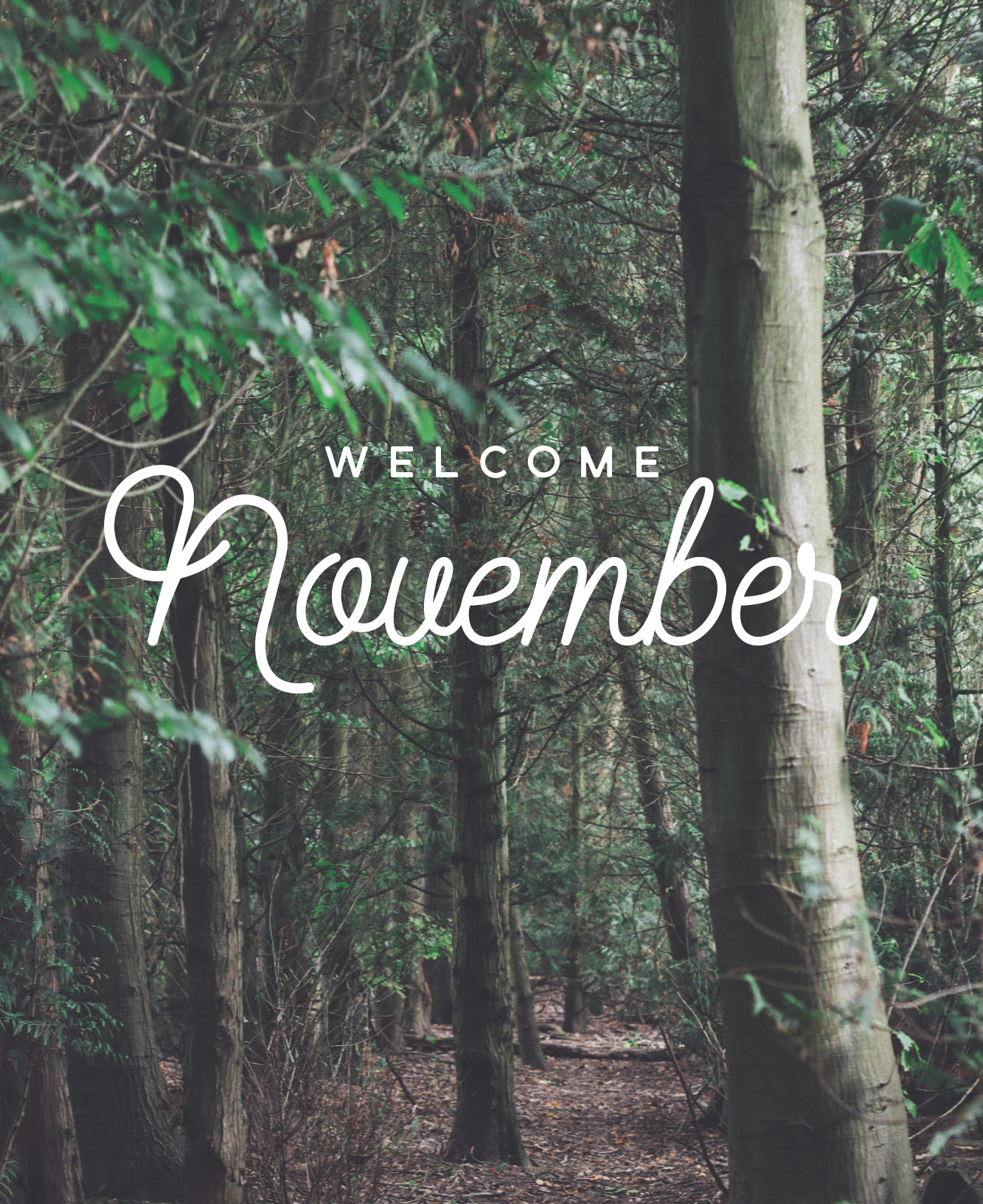 Welcome November Photos Tumblr