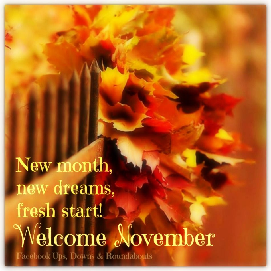 Welcome November Quotes Pictures