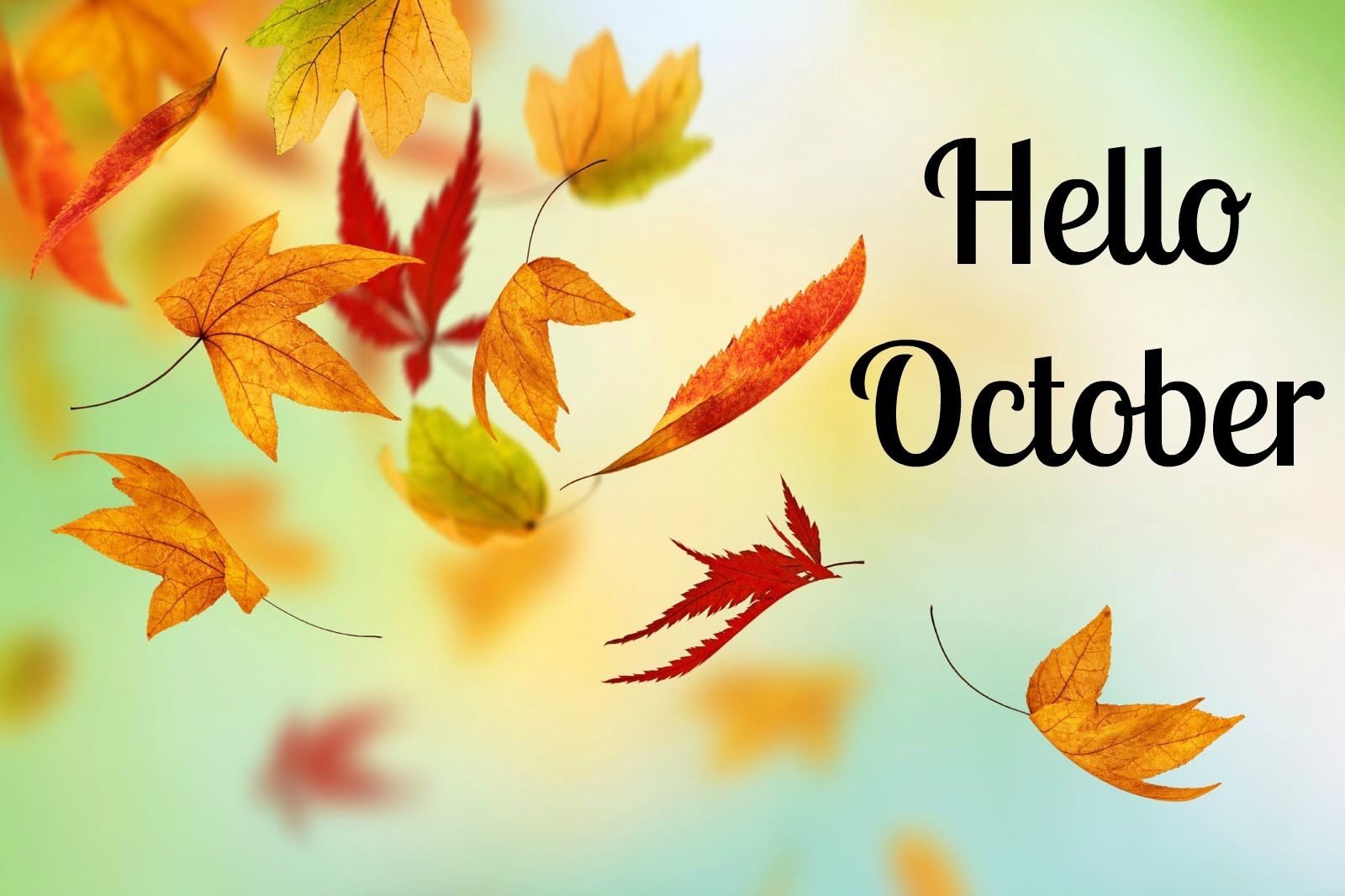 Welcome October Wallpaper