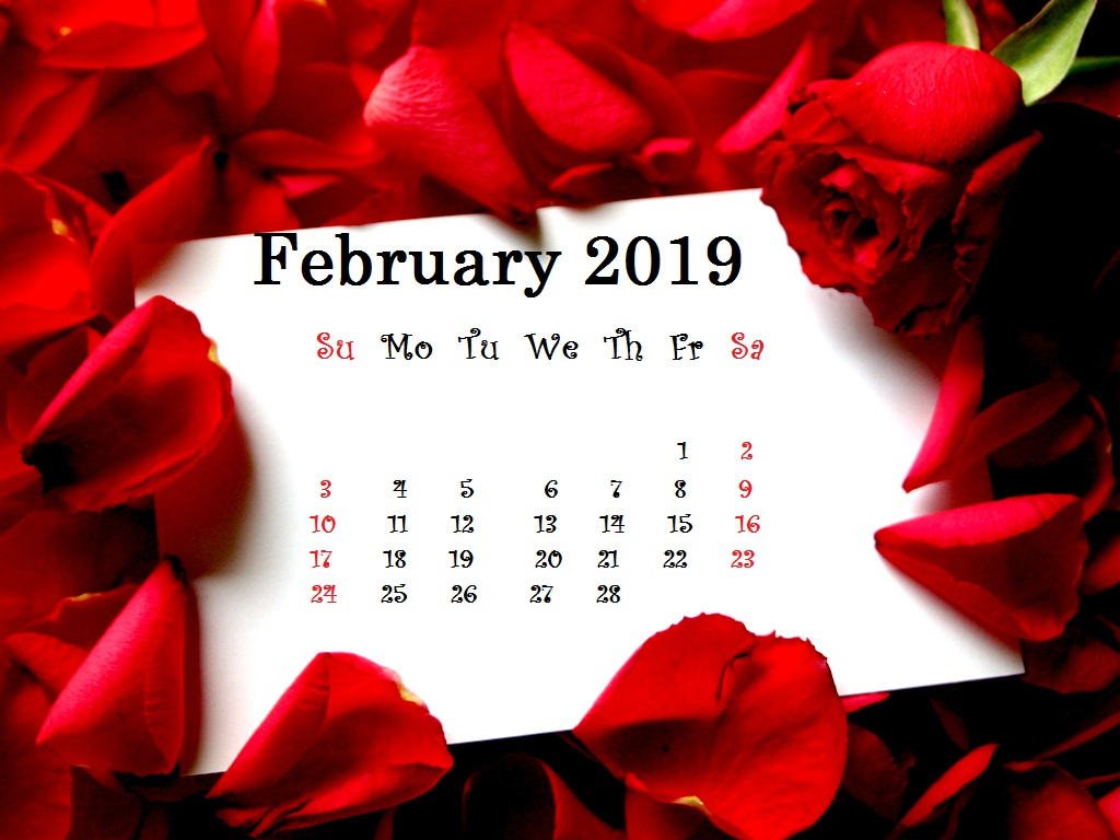 Red Roses Background February 2019 Desktop Calendar