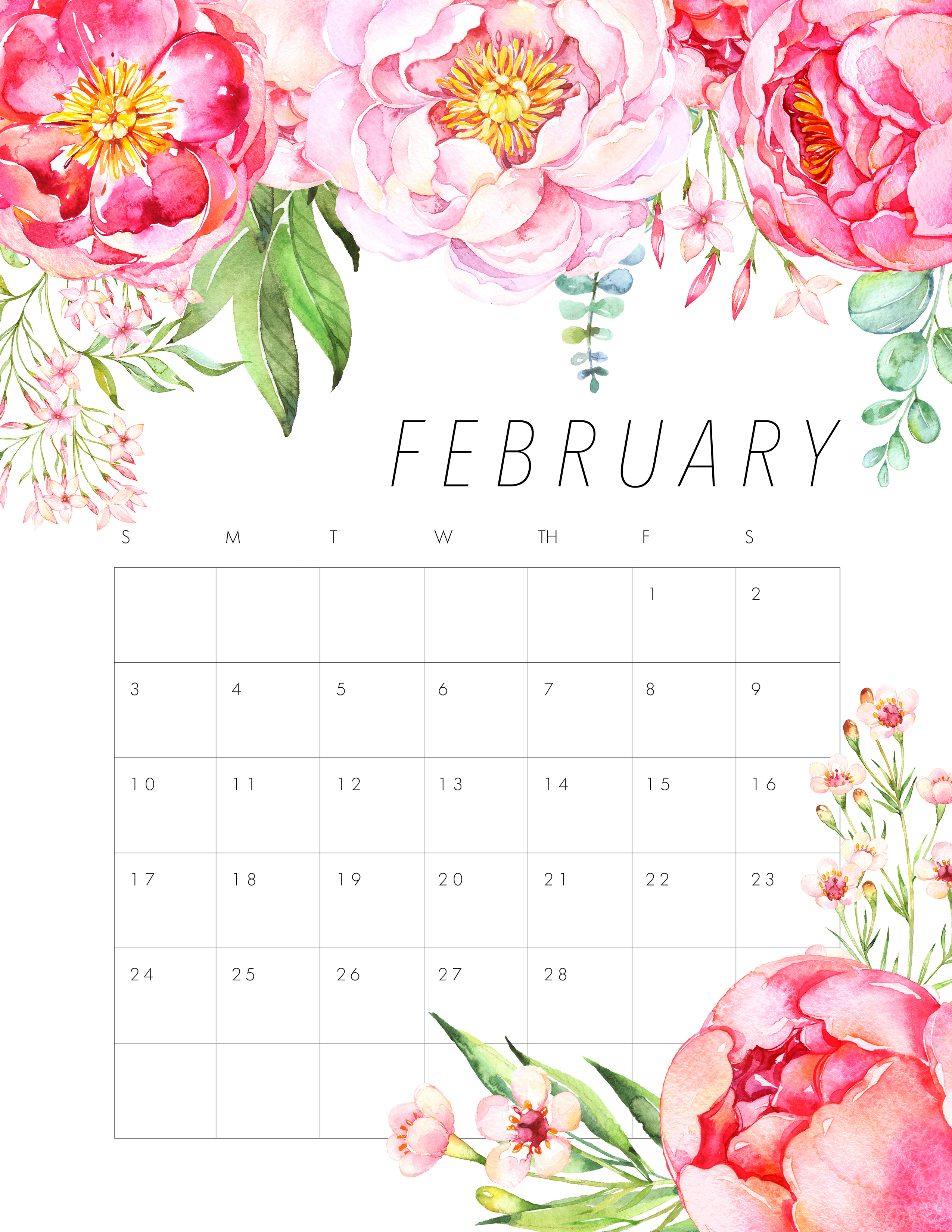 February 2019 Cute Wall Calendar
