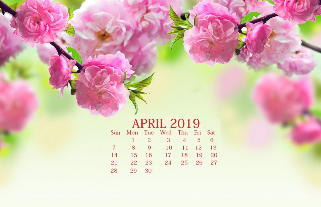 Floral April 2019 Desktop Screensaver