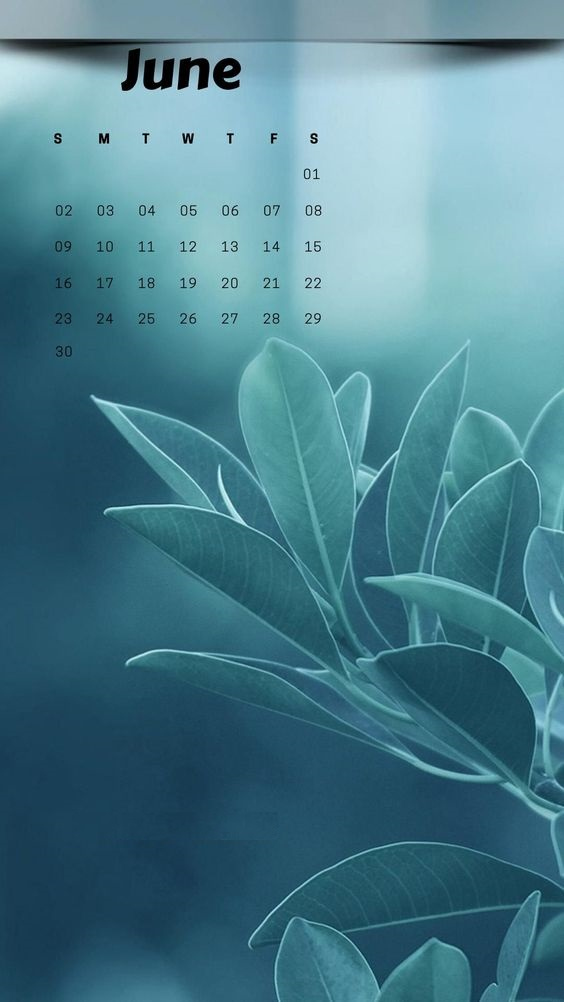 Free June 2019 iPhone Calendar