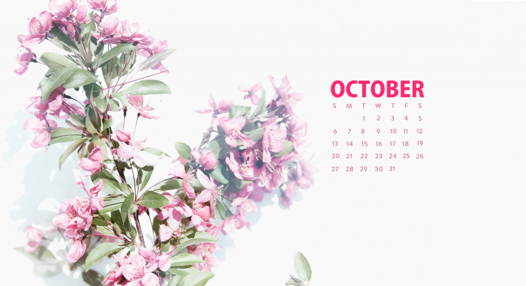 Floral October 2019 Desktop Wallpaper